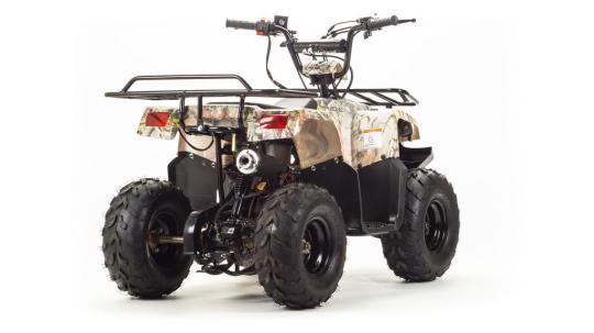 Квадроцикл 110 RIDER